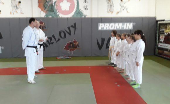 Krajská soutěž karate pro mládež