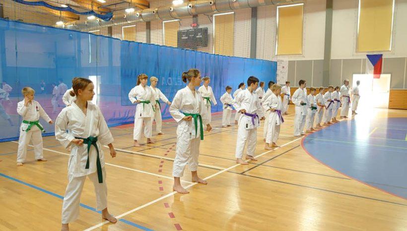 Červencové akce karate